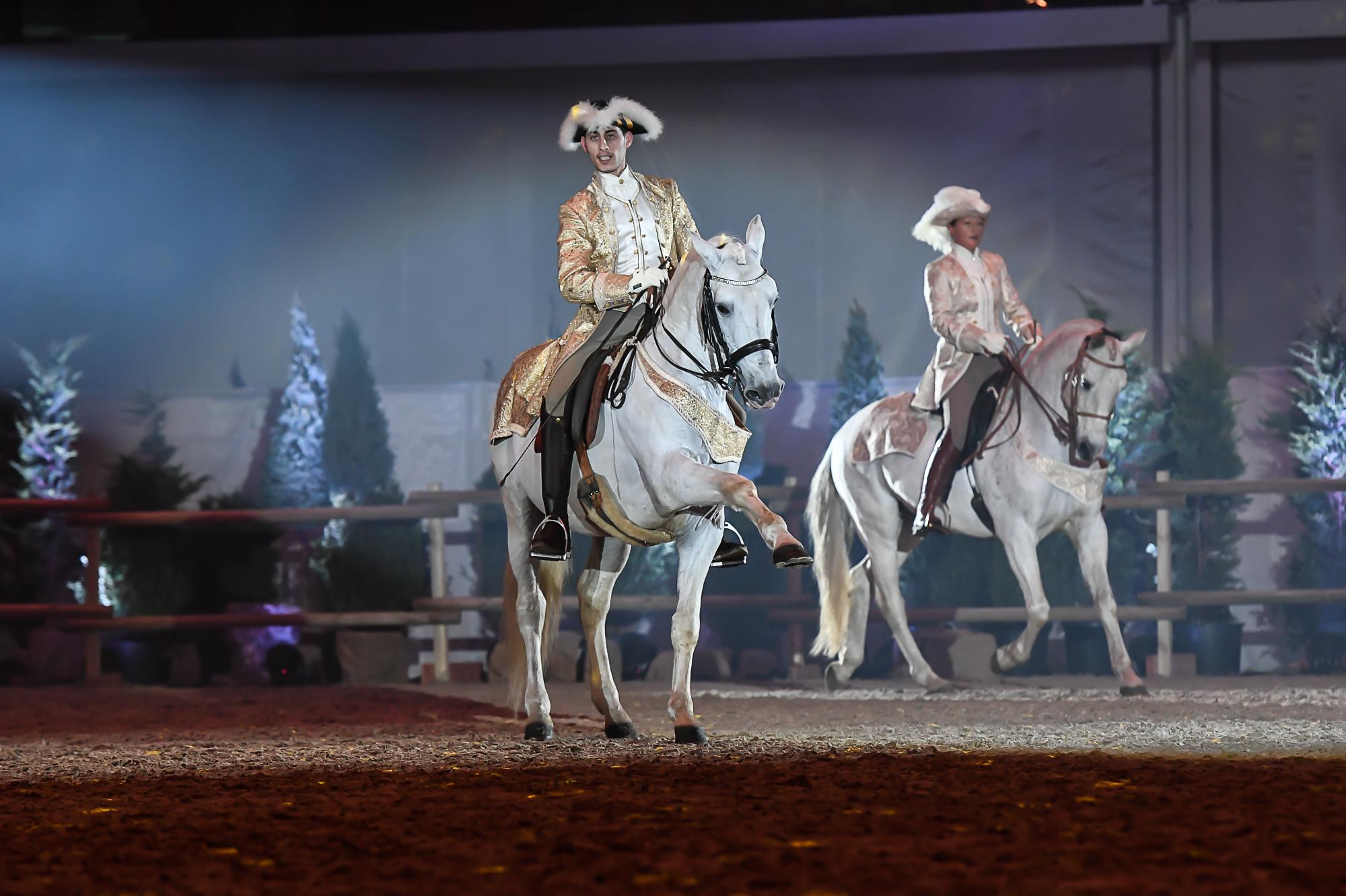 Pferd+Sport: Zucht und Sport in Schleswig-Holstein und Hamburg ...